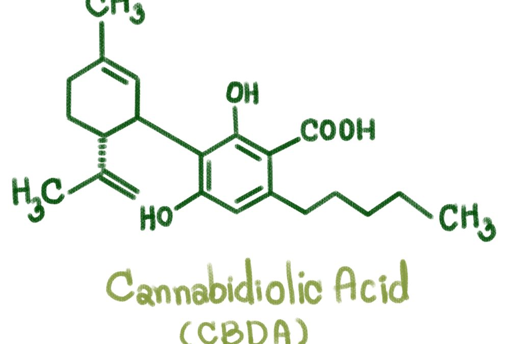 What is CBDa and How is it Different from General CBD?